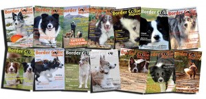 Border Collie Magazine