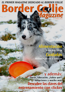 Portada Border Collie Magazine número 01 - Febrero 2011