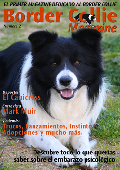 Portada Border Collie Magazine número 02 - Mayo 2011