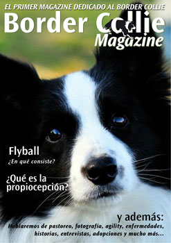 Portada Border Collie Magazine número 06 - Septiembre 2012