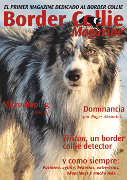 Portada Border Collie Magazine número 07 - Febrero 2013