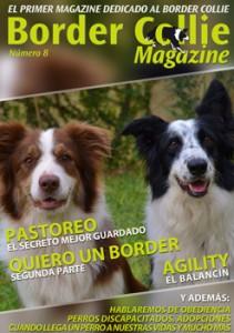 Border Collie Magazine nº08 Portada Octubre 2013