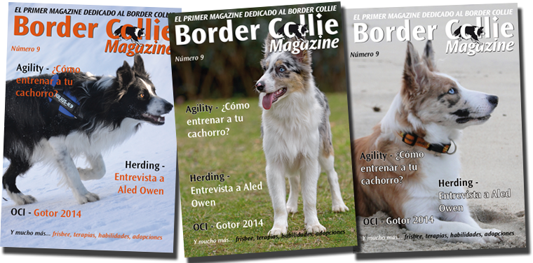 Portada Border Collie Magazine número 09 Abril 2014