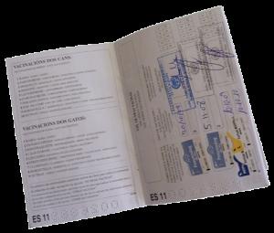 Recomendaciones para viajar con tu Border Collie  Cartilla