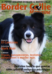 Artículos web de Border Collie Magazine número 2
