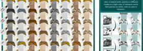 Los colores del Border Collie